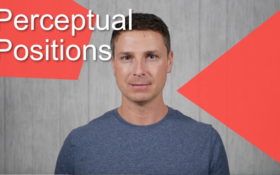 008 – Perceptual Positions – From My Point of View
