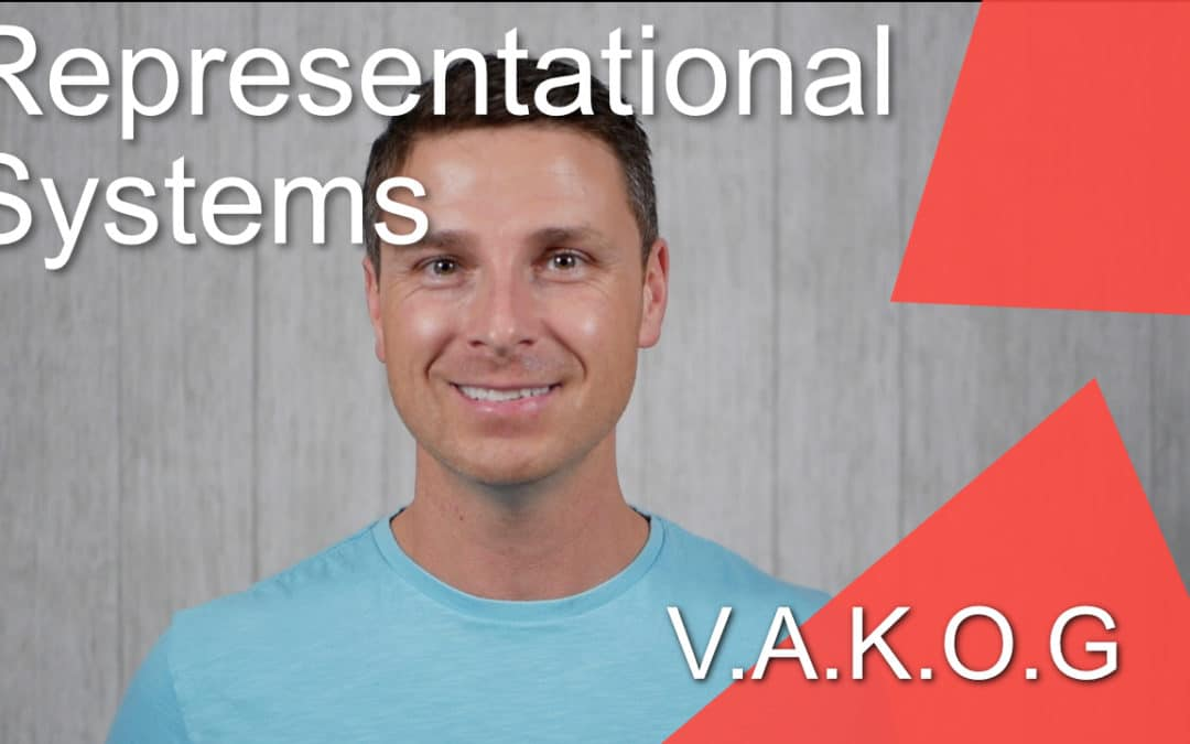 009 – Representational Systems